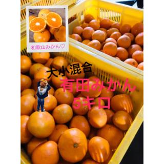 和歌山 有田みかん 早生混合5キロ(フルーツ)