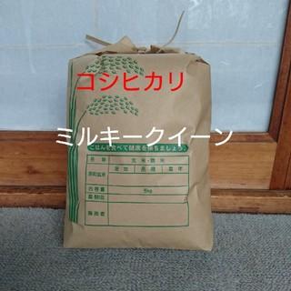 新米です❕白米5㎏(米/穀物)