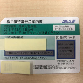 エーエヌエー(ゼンニッポンクウユ)(ANA(全日本空輸))の☆ANA株主優待券1枚☆(その他)