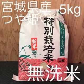 つやつや もちもち つや姫 5kg無洗米 星光のキラキラ米(米/穀物)