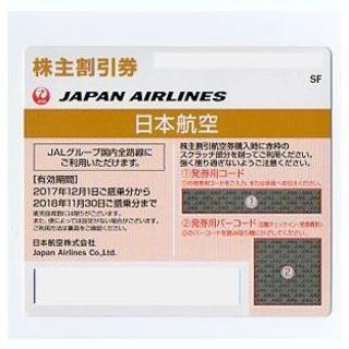 JAL株主優待券 1枚 (50%割引) 11月末期限 (その他)