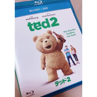 ted2 DVD (外国映画)