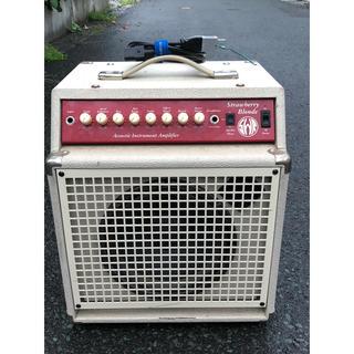 SWR    Strawberry Blonde アコースティック  アンプ (ギターアンプ)