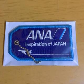 エーエヌエー(ゼンニッポンクウユ)(ANA(全日本空輸))のANA (航空機)