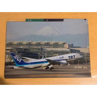 エーエヌエー(ゼンニッポンクウユ)(ANA(全日本空輸))のBlue wing様 専用(航空券)