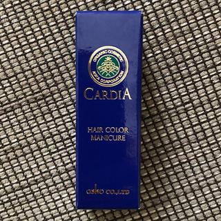 アスカコーポレーション(ASKA)のぽっけの服屋さん様専用 ヘアマニキュア ブラック2本セット(その他)