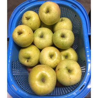 味に自信あり!青森県産りんご 王林 5キロ