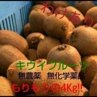 キウイフルーツ もりもりの4kg 訳あり!
