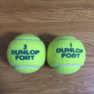 ダンロップ(DUNLOP)のダンロップフォート(ボール)