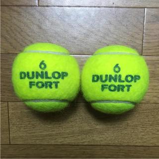 ダンロップ(DUNLOP)の腰痛対策・マッサージにテニスボール 2個(エクササイズ用品)