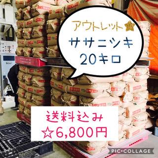 きょん様専用ページ☆古米!宮城県産ササニシキ20キロ(米/穀物)