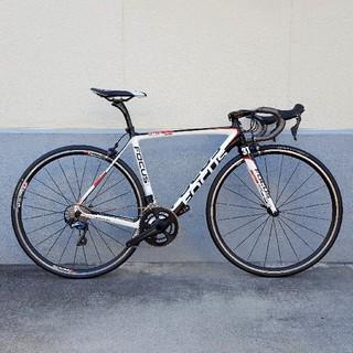 FOCUS◆IZALCO TEAM◆アルテR8000組◆美品(自転車本体)