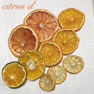 citrus d' ドライフルーツ(ドライフラワー)