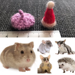 小動物用 ベレー帽 サンタ帽 セット(小動物)