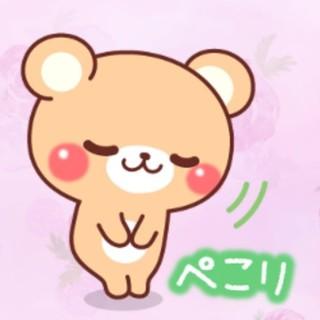サンリオ(サンリオ)のSANRIO メッシュケース(カードサイズ)(キャラクターグッズ)