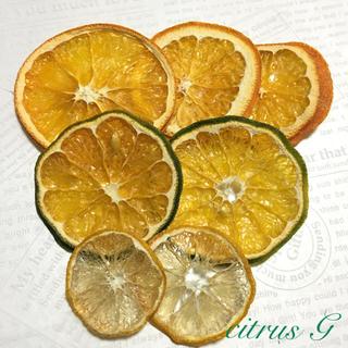 citrus G & B  ドライフルーツ (ドライフラワー)