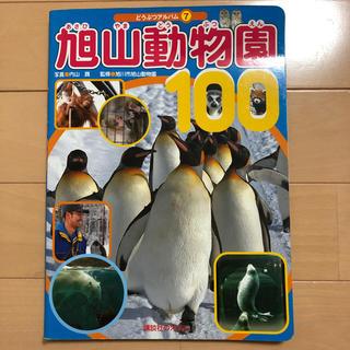 コウダンシャ(講談社)の旭山動物園100  どうぶつアルバム7(絵本/児童書)