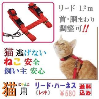 猫逃げない・猫安全!安心お散歩に★猫用リード・ハーネスセット(レッド)(猫)