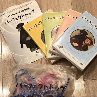 パーフェクトドッグ〜犬と私のしあわせの法則〜DVD4枚.躾用首輪.コマンドカラー(犬)
