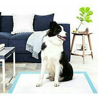 ペットシーツMサイズ50枚セット(犬)