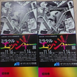 ミラクルエッシャー展 チケット×2(美術館/博物館)