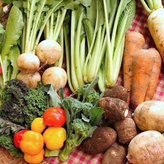 成田産 お野菜詰め合わせ10品100サイズ(栽培期間中無農薬、無化学肥料)(野菜)