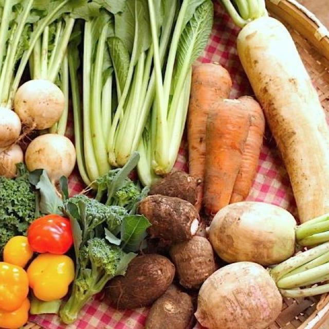 成田産 お野菜詰め合わせ7品100サイズ(栽培期間中無農薬、無化学肥料) 食品/飲料/酒の食品(野菜)の商品写真
