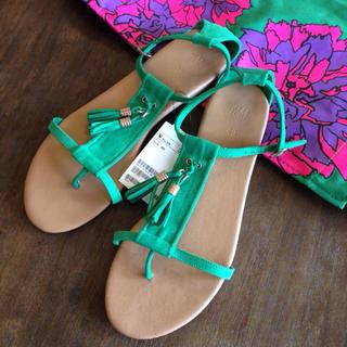 エイチアンドエム(H&M)の新品タグ付 グリーン フラットサンダル(サンダル)