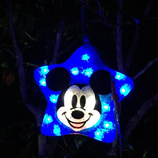 ディズニー(Disney)のayasa様専用(アイドルグッズ)