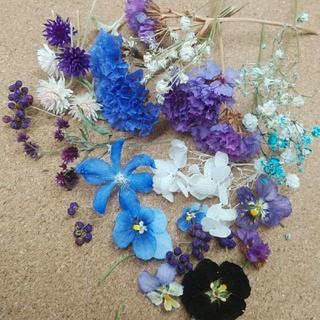 花材59 ドライフラワー ブルーパープル系 レジン封入にも最適な小花のセット(ドライフラワー)