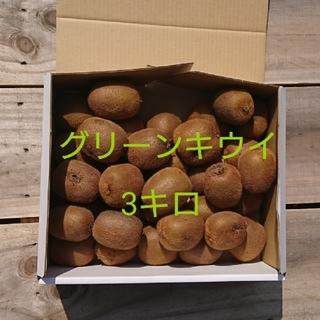 訳あり!広島県大崎下島産 無農薬グリーンキウイ 約3キロ(フルーツ)
