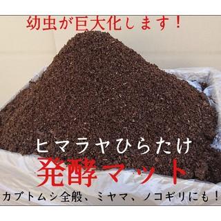 ベビースター様専用 200リットル送料込み ヒマラヤひらたけ発酵カブトムシマット(虫類)