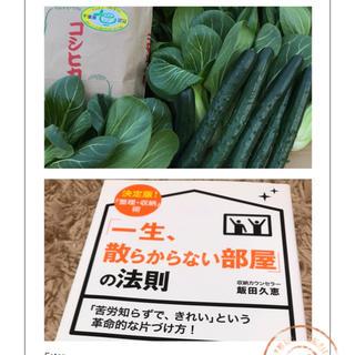 本プラスセット。コシヒカリ、キュウリ、チンゲン菜(野菜)
