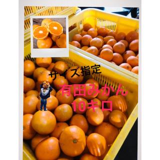 さき 様専用 有田みかん 早生Sサイズ10キロ(フルーツ)