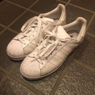 アディダス(adidas)のアディダス スーパースター パイソン(スニーカー)