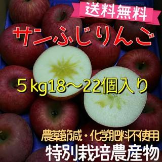 蜜入りサンふじりんご5kg送料無料18〜22個入り【特別栽培】福島市(フルーツ)