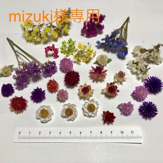ドライフラワー 花材 小花セット 花かんざし A-64(ドライフラワー)