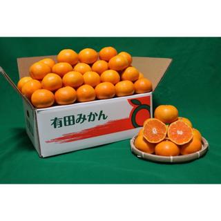 訳あり‼️和歌山産 有田みかん 10kg 人気のSサイズ(フルーツ)