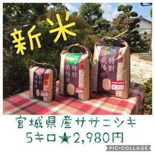 新米☆大粒☆特A取得☆宮城県産ササニシキ5キロ(米/穀物)