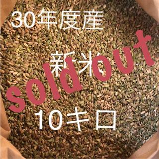 30年度産 きぬむすめ  小米 くず米  青米 10キロ 【和歌山県産】(米/穀物)