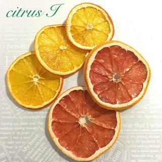 citrus  I  ドライフルーツ(ドライフラワー)