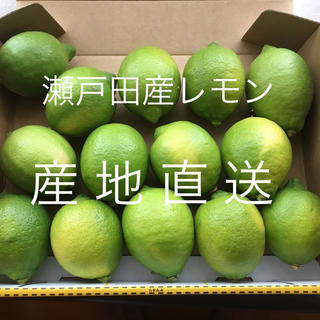 【27日まで】広島 瀬戸田産 グリーンレモン(フルーツ)