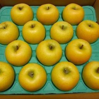 青森県産 りんご 5kg 訳あり シナノゴールド(エコ梱包)(フルーツ)
