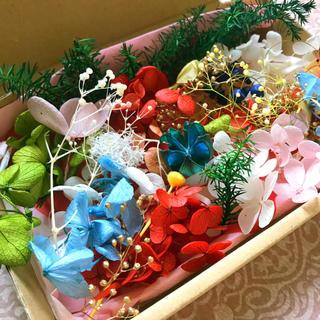ハーバリウム★花材いろいろ おすそ分けセット★クリスマス用にも フィルム付き ❶(プリザーブドフラワー)