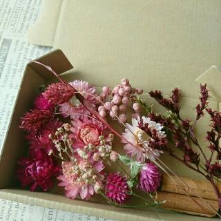ドライフラワーの花材セット  シックピンク系10(ドライフラワー)