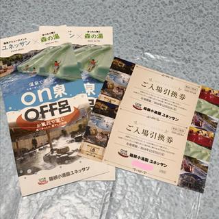 ユネッサン 入場券(プール)
