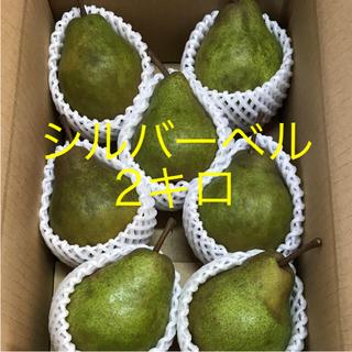 洋梨  シルバーベル  食べ頃‼️  2キロ(フルーツ)