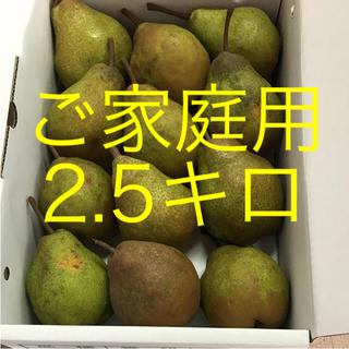 洋梨  シルバーベル  食べ頃‼️ ご家庭用  2.5キロ(フルーツ)