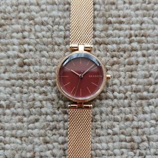 スカーゲン(SKAGEN)の腕時計 SKAGEN SKW2640 (腕時計)