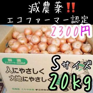 北海道産 減農薬 小さい玉ねぎ 20キロ(野菜)